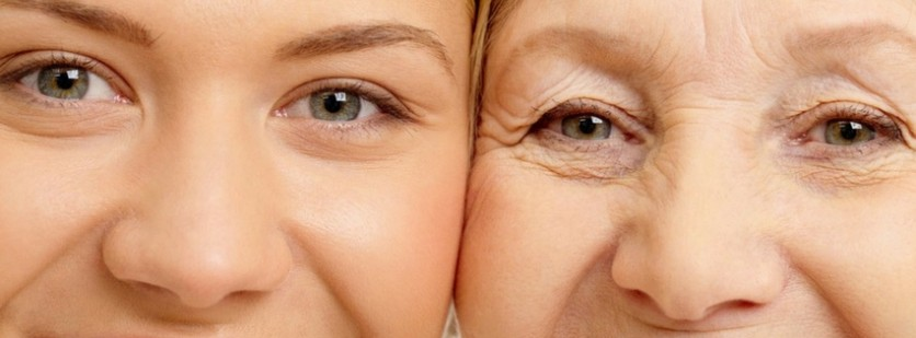 Facts About Skin Aging